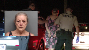 Woman charged for stabbing man in Henry County