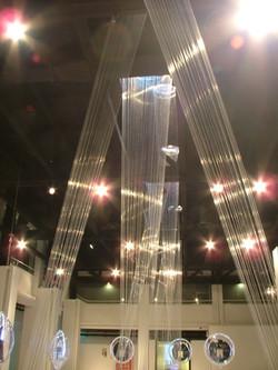 Berker lights exhibit (light forest)