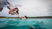 The Faery and the Mermaid