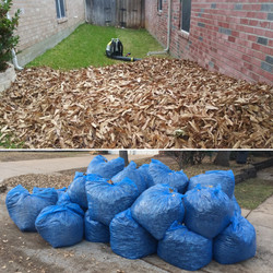 GI-Mow | Leaf Cleanup & Removal