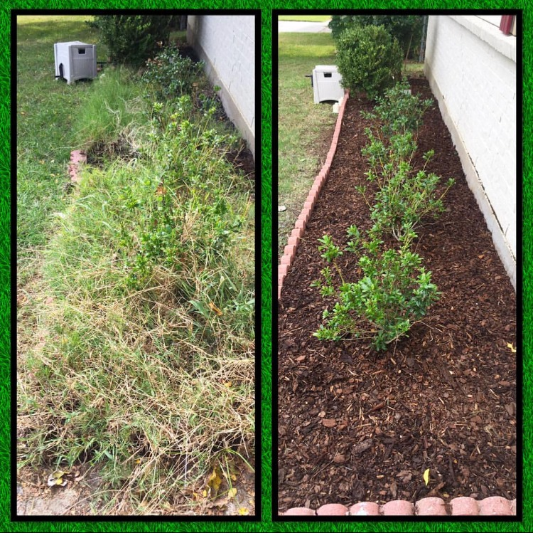 Planter Bed Clean-Up