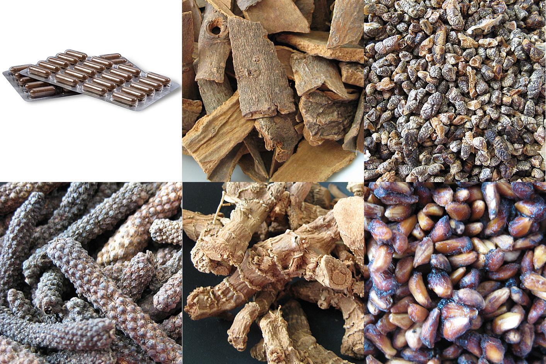 Padma Digestin ingredientai