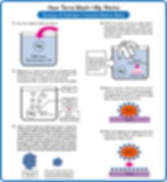 How it works (Revised).jpg