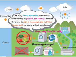 Used water from laundry can be used for farming?!
