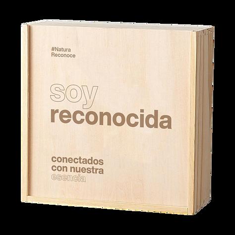 box_reconocida.png
