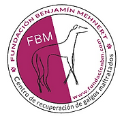 fbm.PNG