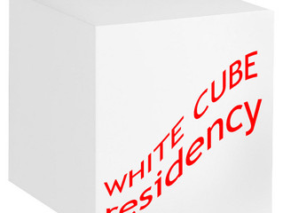 White Cube Residency - New Mexico