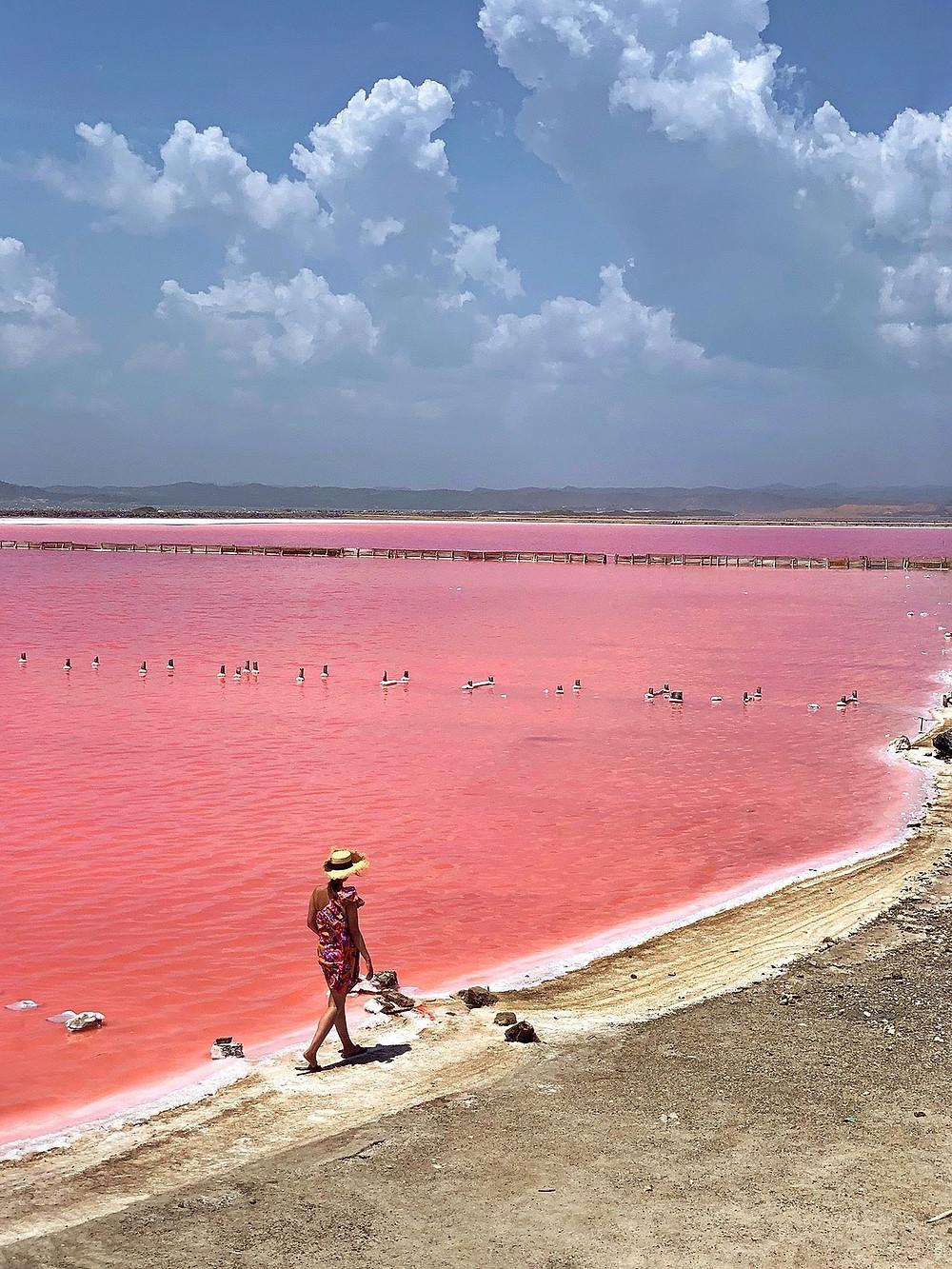 pink sea cartagena