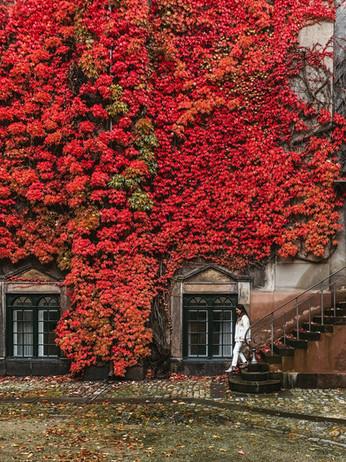 Copenhagen's Most Colorful Places