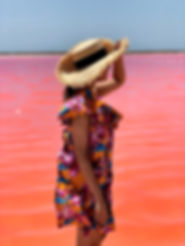 pink sea.jpg