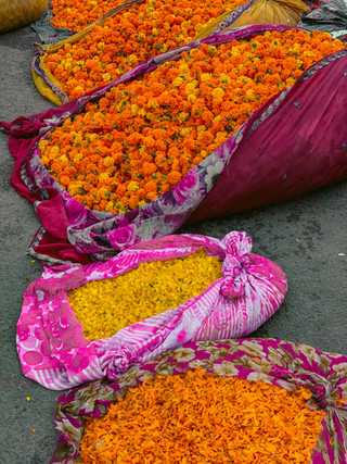 The Jaipur Wholesale Flower Market