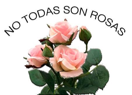 rosas-jorge.jpg