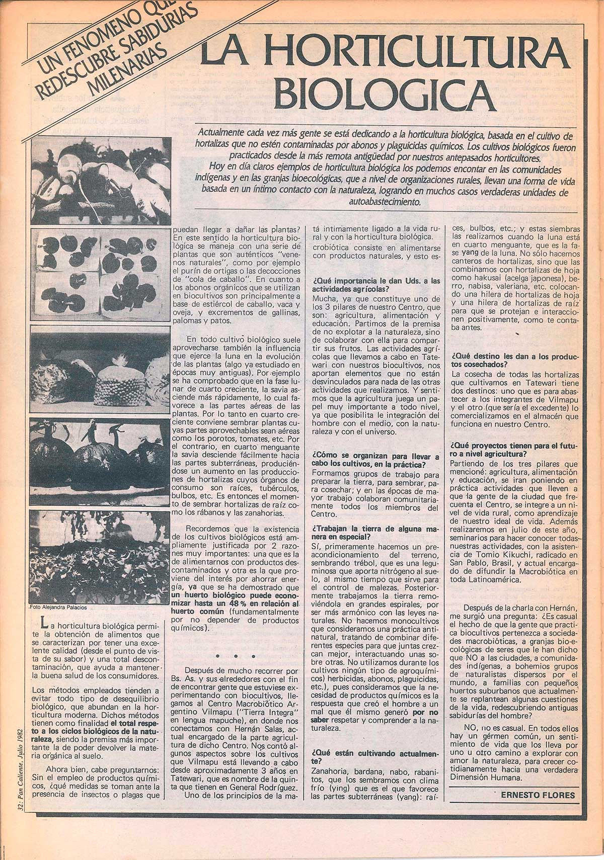 Pan-Caliente-N°7_Page_32.jpg