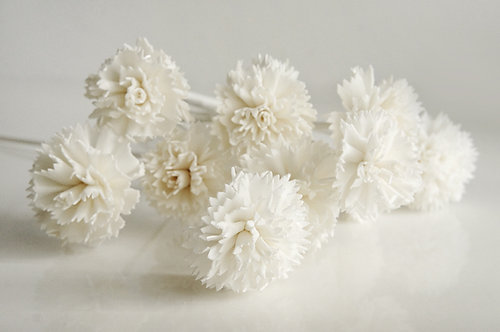 Set of 10 White Carnation Sola Flower for Home fragrance Diffuser.