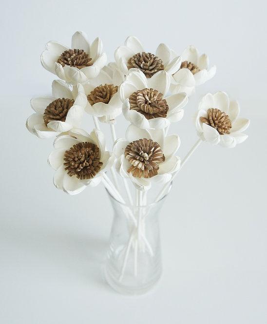 Set of 10 Lotus Flower for Home fragrance Diffuser.