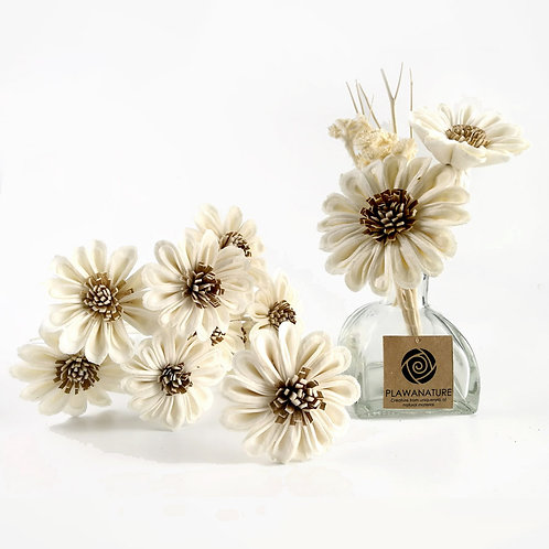 Set of 10 White Sunflower Sola Flower for Home fragrance Diffuser.
