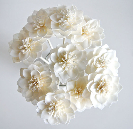 Set of 10 White Dahlia Sola Flower for Home fragrance Diffuser.
