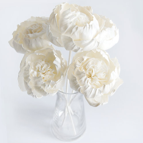 "Set of 5   Peony  3""  Sola Flower for Home fragranc"
