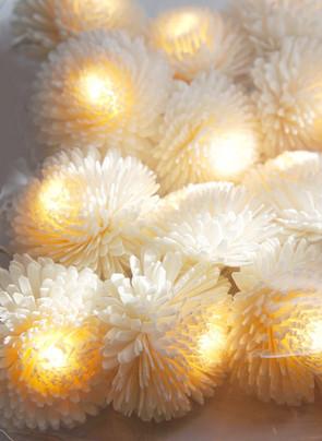 Gerbera string light