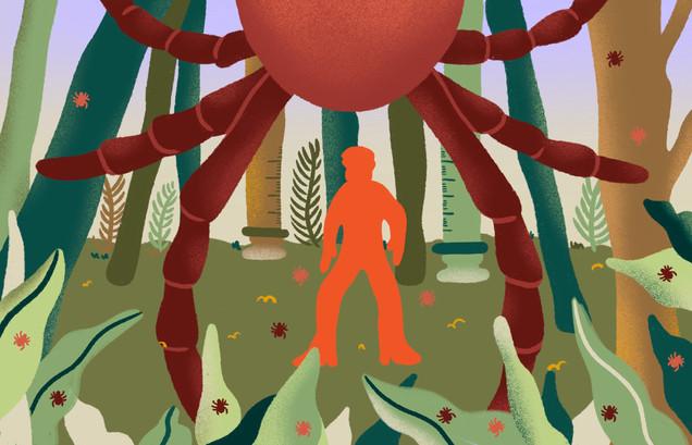 TIME Magazine - Lyme Disease