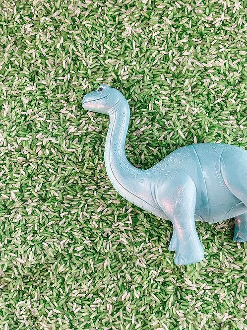 Dino Sensory Rice Kit