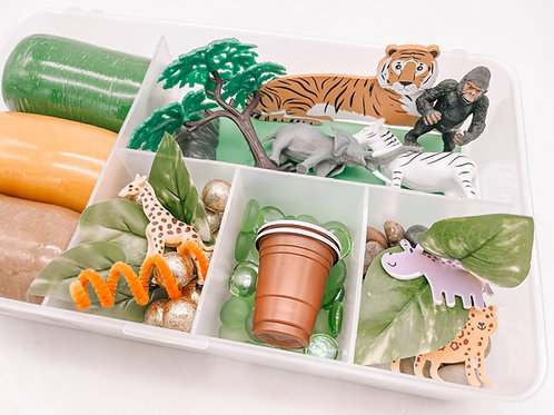 Safari Playdough Kit