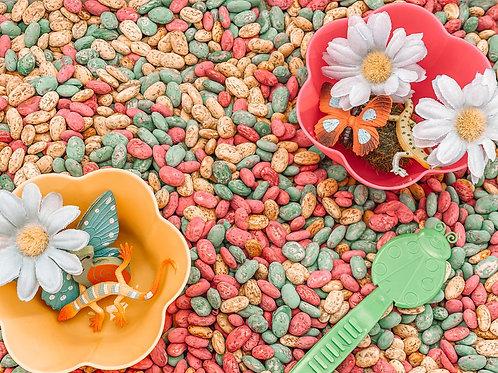 Spring Beans Sensory Kit