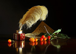 IMG_3927 La plume aux griottes