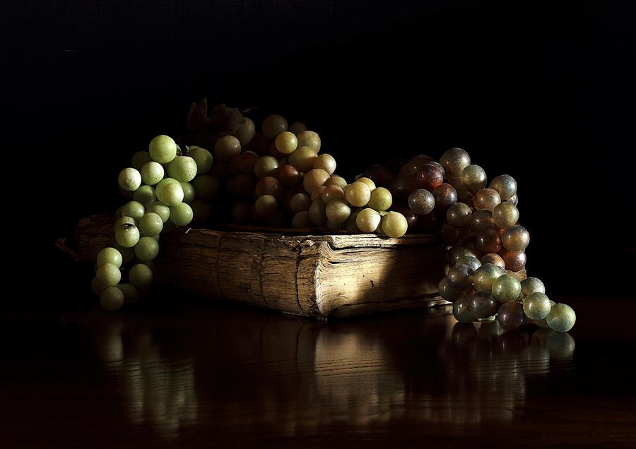 Les raisins N°2556