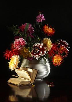 Bouquet de dahlias au livre IMG_5808