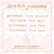2018 birth availability.jpg
