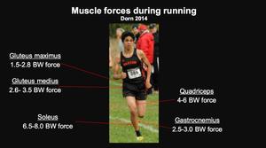 #runstrong #runningstrength #runnersstrength