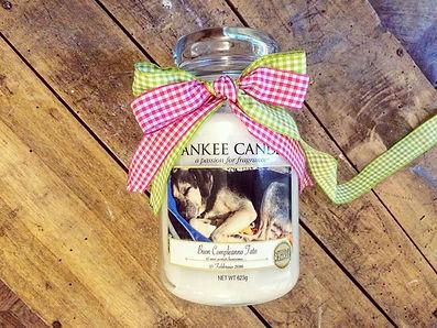 yankee, candle, foto, etichetta personalizzat, fiocco, cane