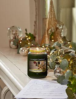 Magical Christmas Morning-Singing Carols