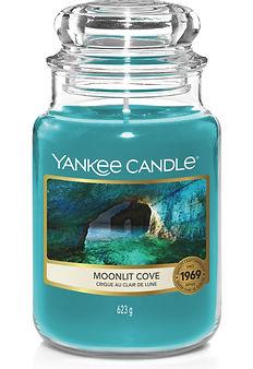 Moonlit Cove_Large Jar.jpg