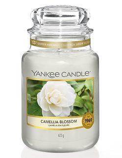 YC 1651381E_Large Jar_Garden Hideaway_Ca