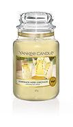 YC 1651385E _Large Jar_Garden Hideaway_H