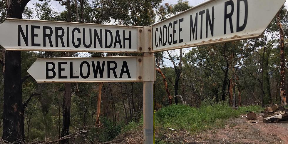 Community event - Nerrigundah NSW