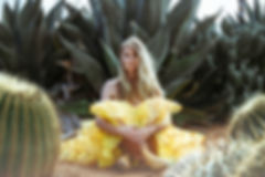 vintage, yellow, crinolen, tutu, skirt, cactus, cactus country, fashion, desert