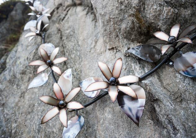 Blumen Belalp.jpg
