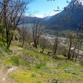 Mund, Foto: Trail Goats