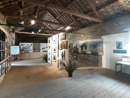 A successful exhibition