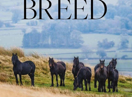 Supporting the Breed - Article