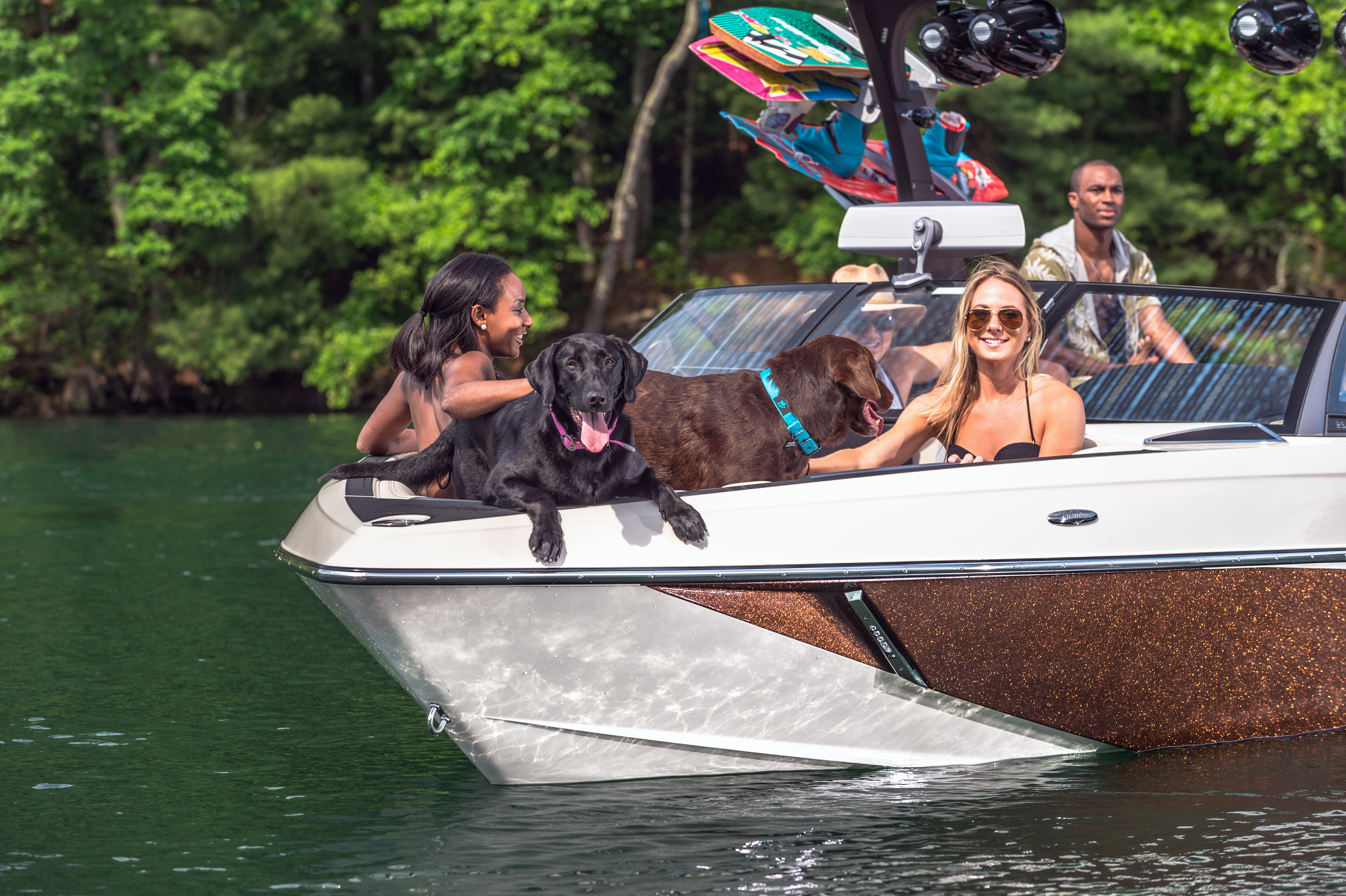 2016-25LSV_lifestyle-dogs