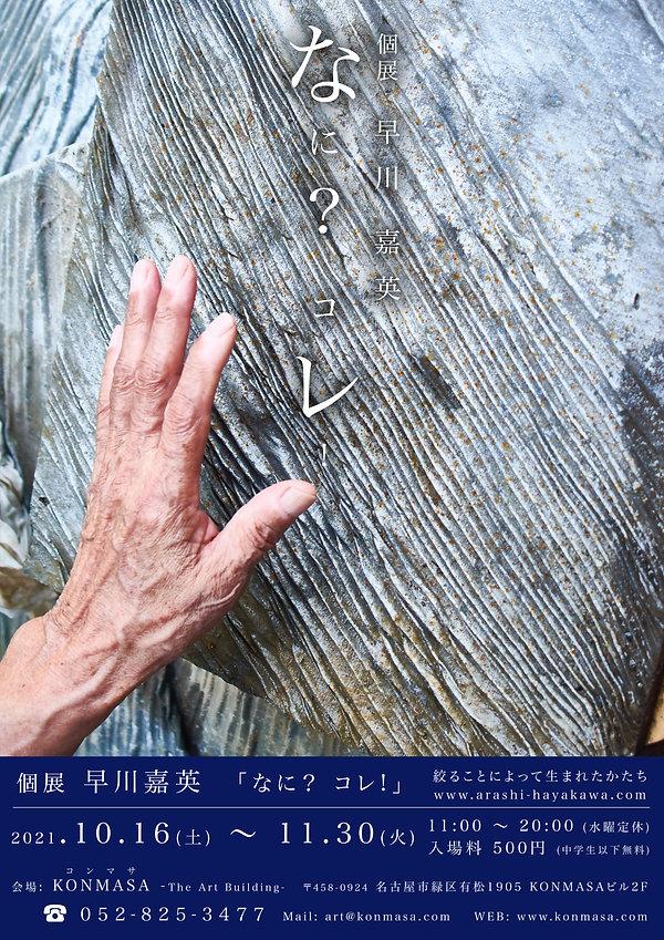 早川_FLY2 copy.jpg