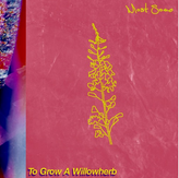 MOST SOME - To Grow a Willowherb