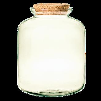 eng_pl_Glass-jar-vase-W-524-cork-H-31-5c