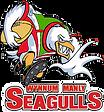 Wynnum Seagulls v2.png