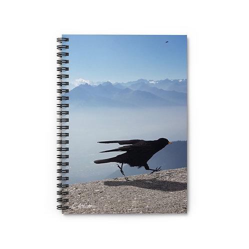 The Bird Notebook