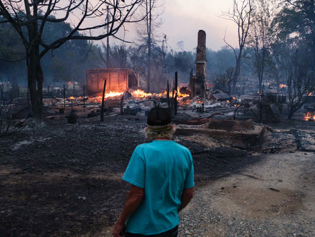 """""""Zogg Fire"""" Destroys 146 Structures"""